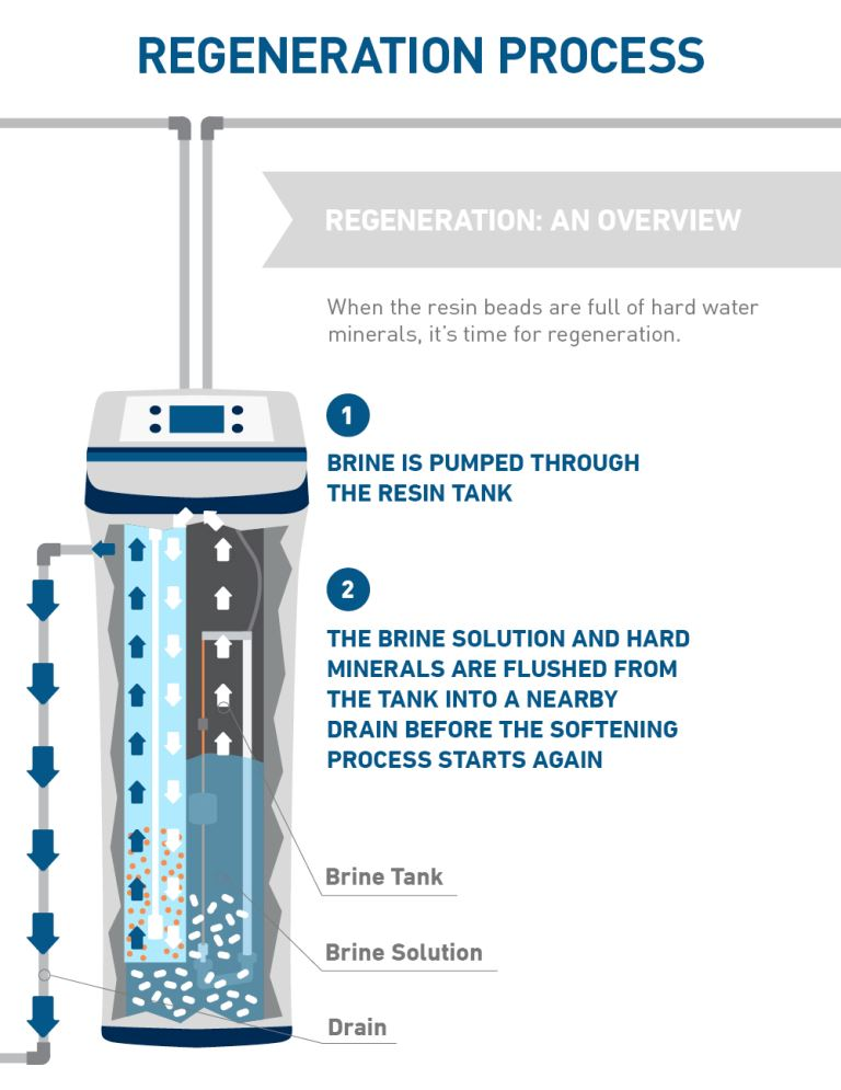 Regeneration Process